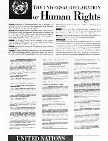 Una setmana de drets humans amb el LIDIB